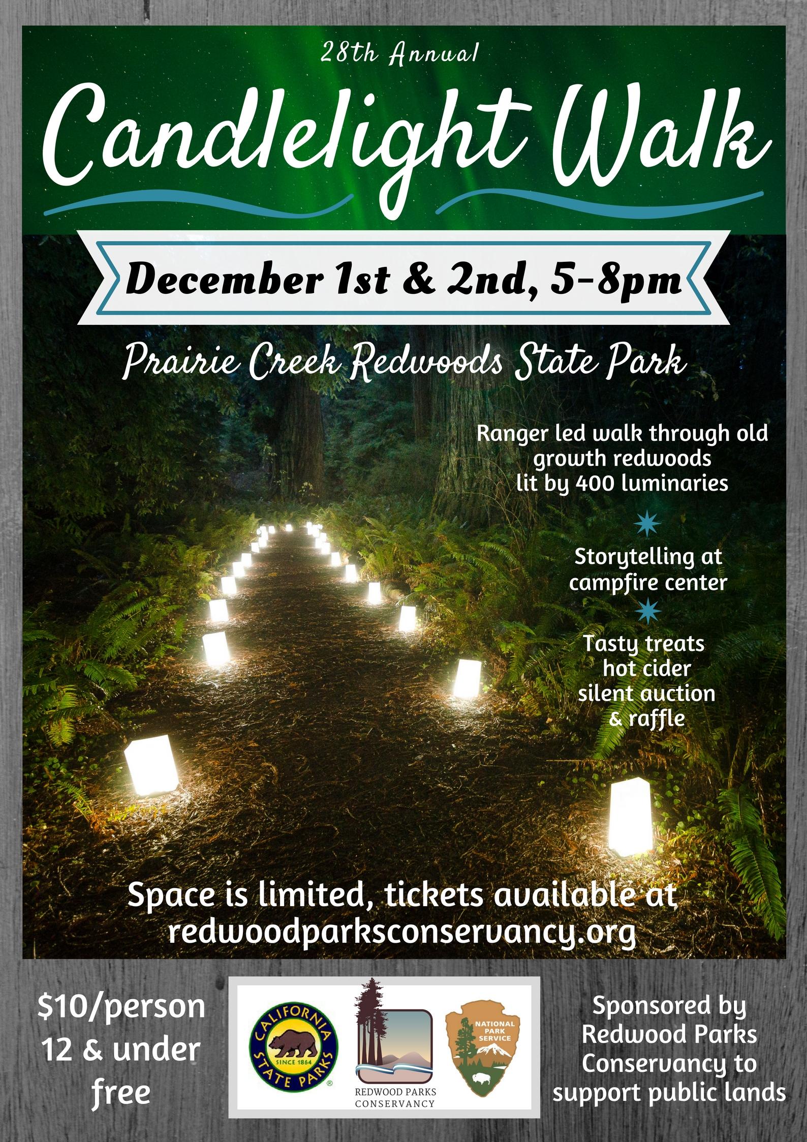 Candlelight Walk at Prairie Creek Redwoods