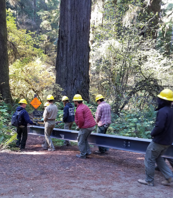 Group of six men holding a gray fiberglass girder walking on a redwood forest at the opening of a trail.