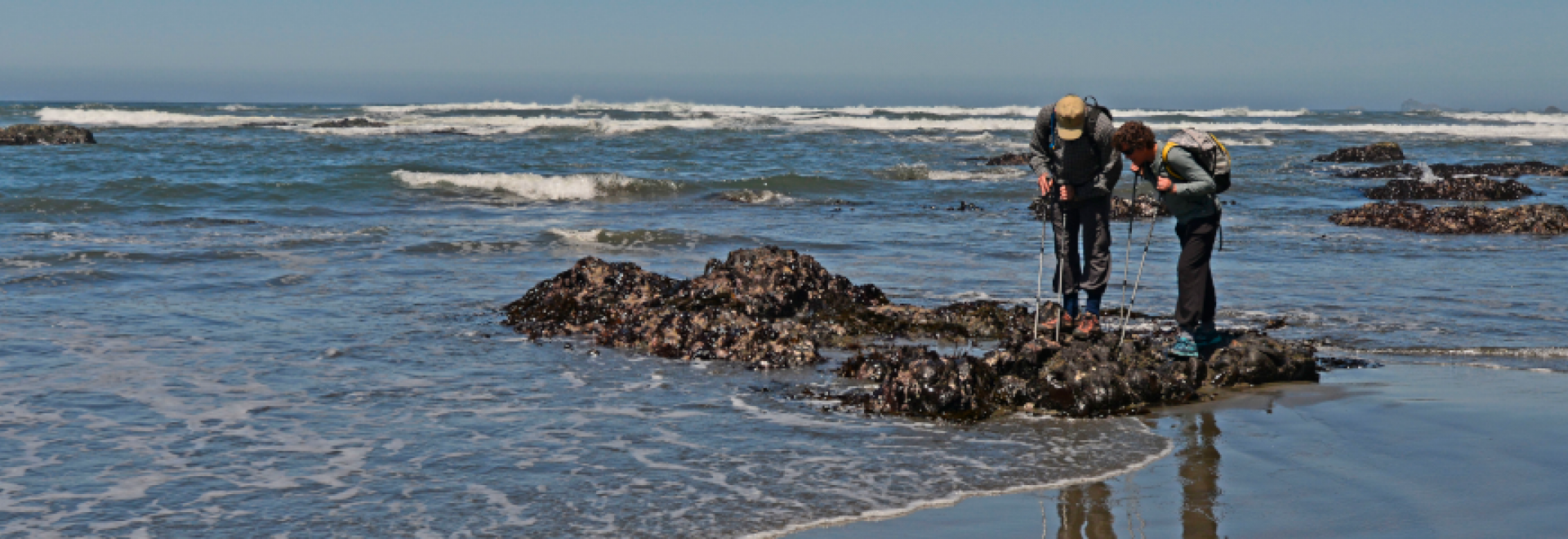 Two people tidepooling on Enderts Beach near Redwood National and State Parks - John Chao photo