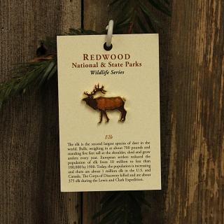 Roosevelt Elk Hat Pin representing a Roosevelt Bull Elk