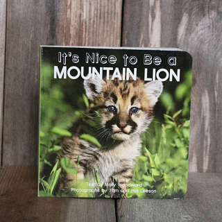 It's Nice to be a Mountain Lion Board Book