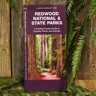 Redwood National and State Parks Pocket Guide