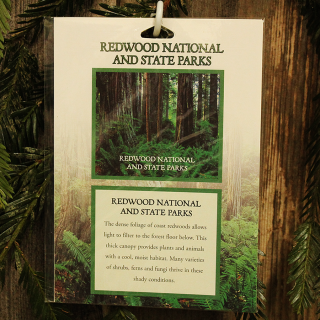 Redwood National and State Parks Passport Sticker