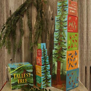Tallest Tree Stacking Blocks