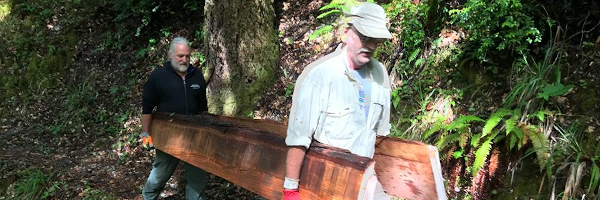 Two men carrying wooden planks for wilderness trails rebuilding work.